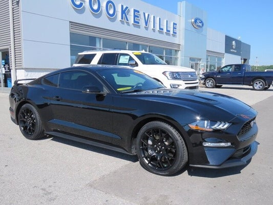 Ford Mustang Ecoboost >> New 2018 Ford Mustang Ecoboost Premium For Sale Ford Lincoln Of